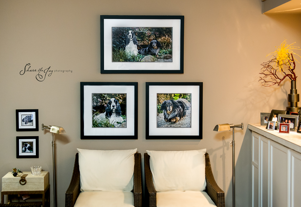 How To Hang Framed Wall Art Pet And Horse Photographer San Francisco Oakland Lafayette